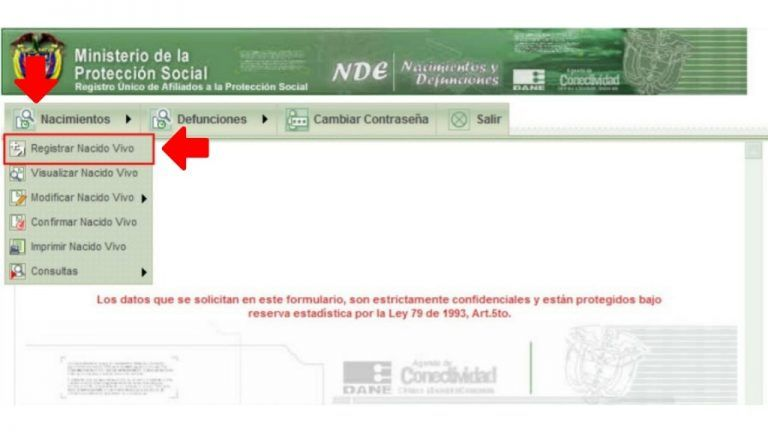 formulario ruaf nd registro nacido vivo